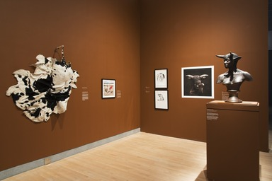 Disguise: Masks and Global African Art, April 29, 2016 through September 18, 2016 (Image: DIG_E_2016_Disguise_09_PS11.jpg Brooklyn Museum photograph, 2016)