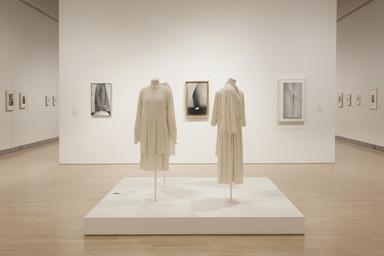 Georgia O'Keeffe: Living Modern, March 3, 2017 through July 23, 2017 (Image: DIG_E_2017_Georgia_OKeeffe_01_PS11.jpg Brooklyn Museum photograph, 2017)