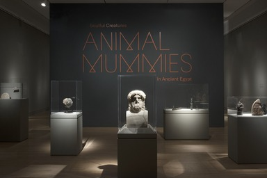 Soulful Creatures: Animal Mummies in Ancient Egypt, September 29, 2017 through January 21, 2018 (Image: DIG_E_2017_Soulful_Creatures_01_PS11.jpg Brooklyn Museum photograph, 2017)