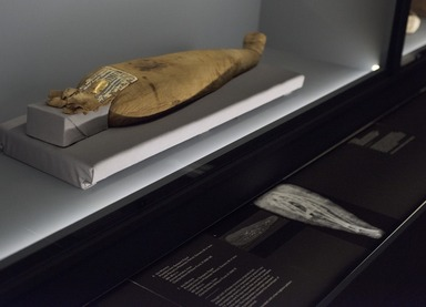 Soulful Creatures: Animal Mummies in Ancient Egypt, September 29, 2017 through January 21, 2018 (Image: DIG_E_2017_Soulful_Creatures_07_PS11.jpg Brooklyn Museum photograph, 2017)