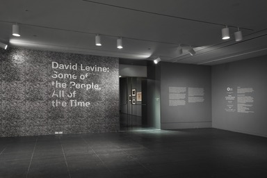 David Levine: Some of the People, All of the Time, Thursday, May 24, 2018 through Sunday, July 08, 2018 (Image: DIG_E_2018_David_Levine_01_PS11.jpg Brooklyn Museum photograph, 2018)