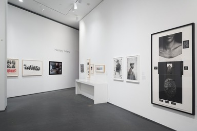 Half the Picture: A Feminist Look at the Collection, Thursday, August 23, 2018 through Sunday, March 31, 2019 (Image: DIG_E_2018_Half_the_Picture_16_PS11.jpg Brooklyn Museum. (Photo: Jonathan Dorado) photograph, 2018)