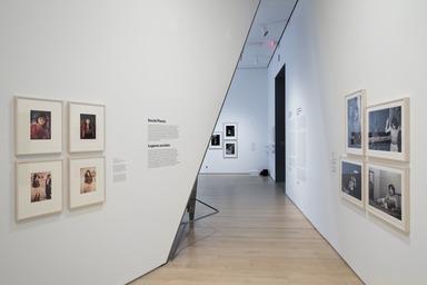 Radical Women: Latin American Art, 1960-1985, April 13, 2018 through July 22, 2018 (Image: DIG_E_2018_Radical_Women_75_PS11.jpg Brooklyn Museum (Photo by Jonathan Dorado) photograph, 2018)