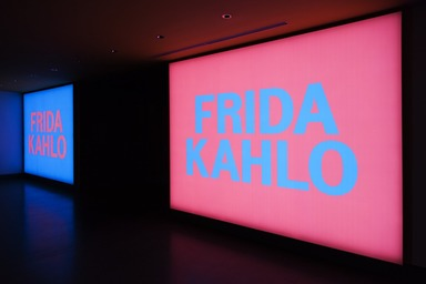 Frida Kahlo: Appearances Can Be Deceiving, Friday, February 08, 2019 through Sunday, May 12, 2019 (Image: DIG_E_2019_Frida_Kahlo_09_PS11.jpg Brooklyn Museum. (Photo: Jonathan Dorado) photograph, 2019)