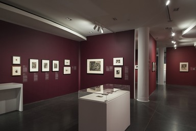 Rembrandt to Picasso: Five Centuries of European Works on Paper, Friday, June 21, 2019 through Sunday, October 13, 2019 (Image: DIG_E_2019_Rembrandt_to_Picasso_18_PS11.jpg Brooklyn Museum. (Photo: Jonathan Dorado) photograph, 2019)