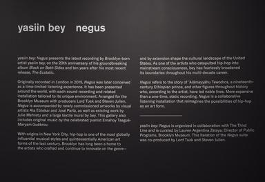yasiin bey: Negus, November 15, 2019 through January 26, 2020 (Image: DIG_E_2019_yasiin_bey_Negus_14_PS11.jpg Brooklyn Museum. (Photo: Jonathan Dorado) photograph, 2019)