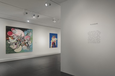 The Slipstream: Reflection, Resilience, and Resistance in the Art of Our Time, Friday, May 14, 2021 through Sunday, March 20, 2022 (Image: DIG_E_2021_The_Slipstream_10_PS11.jpg Brooklyn Museum photograph, 2021)
