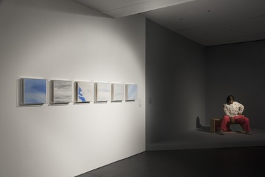 Installation view, The Slipstream: Reflection, Resilience, and Resistance in the Art of Our Time, Brooklyn Museum, May 14, 2021 - March 20, 2022. (Photo: Jonathan Dorado)