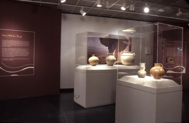 Wit & Wine: A New Look at Ancient Iranian Ceramics from the Arthur M. Sackler Foundation [09/07/2001-12/30/2001]. Installation view.