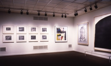 National Print Exhibition, 24th Biennial: Public and Private: American Prints Today, February 7, 1986 through May 5, 1986 (Image: PDP_E1986i006.jpg Brooklyn Museum photograph, 1986)