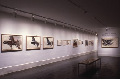 Mary Frank: Persephone Studies, March 19, 1987 through June 07, 1987 (Image: PDP_E1987i005.jpg Brooklyn Museum photograph, 1987)