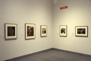 Committed to the Image: Contemporary Black Photographers, February 16, 2001 through April 29, 2001 (Image: PDP_E2001i016.jpg Brooklyn Museum photograph, 2001)