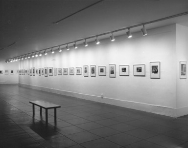 101 Photographs from the Brooklyn Museum Collection, July 07, 1979 through September 03, 1979 (Image: PHO_E1979i045.jpg Brooklyn Museum photograph, 1979)