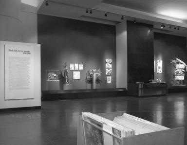 Black Folk Art in America, 1930-1980, July 04, 1982 through September 12, 1982 (Image: PHO_E1982i037.jpg Brooklyn Museum photograph, 1982)