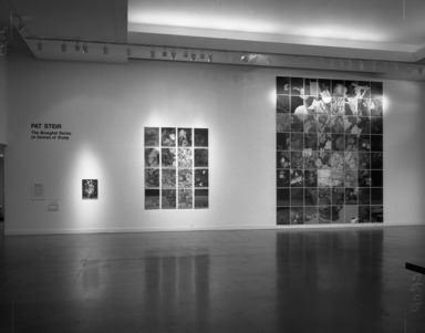 Pat Steir: The Brueghel Series (A Vanitas of Style). [12/06/1984 - 02/18/1985]. Installation view: Grand Lobby.