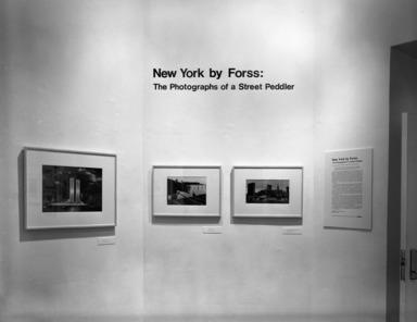 New York By Forss, December 13, 1984 through February 24, 1985 (Image: PHO_E1984i108.jpg Brooklyn Museum photograph, 1984)
