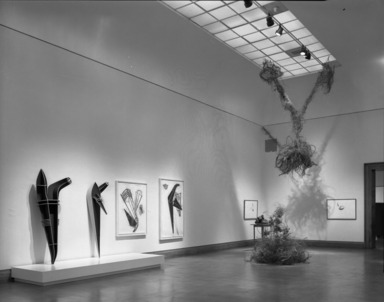 Working in Brooklyn: Sculpture, October 18, 1985 through January 06, 1986 (Image: PHO_E1985i084.jpg Brooklyn Museum photograph, 1985)