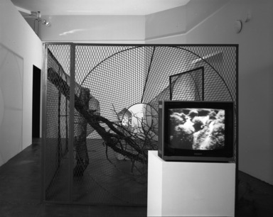 Working in Brooklyn: Installations, August 03, 1990 through October 15, 1990 (Image: PHO_E1990i035.jpg  photograph, 1990)