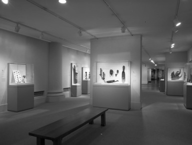 Arts of Africa (installation), March 09, 1995 through 1995 (date unknown) (Image: PHO_E1995i020.jpg Brooklyn Museum. Justin van Soest,er photograph, 1995)