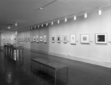 A Different Reality: Symbolist Prints from the Collection, February 07, 1997 through May 04, 1997 (Image: PHO_E1997i002.jpg Brooklyn Museum photograph, 1997)