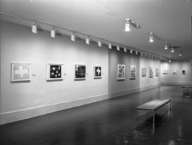 Working in Brooklyn: Joan Snyder: Works on Paper. [03/07/1998 - 06/14/1998]. Installation view.