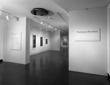 Working in Brooklyn: Exterior/Interior: The Way I See It (5 photographers), May 24, 1998 through August 16, 1998 (Image: PHO_E1998i037.jpg Brooklyn Museum photograph, 1998)