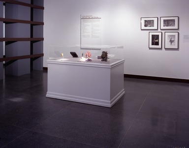 The Guennol Collection: Cabinet of Wonders, February 25, 2000 through May 07, 2000 (Image: PHO_E2000i010.jpg Brooklyn Museum photograph, 2000)