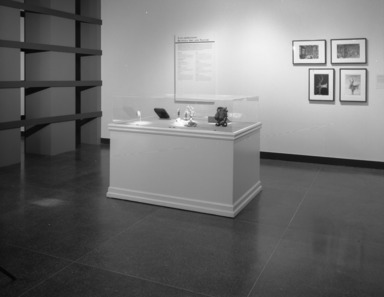 The Guennol Collection: Cabinet of Wonders, February 25, 2000 through May 07, 2000 (Image: PHO_E2000i032.jpg Brooklyn Museum photograph, 2000)