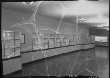 History of Pressed Glass (Mrs. William Greig Walker Collection), October 25, 1940 through December 01, 1940 (Image: PHO_E_1940_History_Pressed_Glass_001_SL5_acetate_bw_SL5.jpg Brooklyn Museum photograph, 1940)