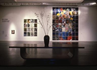 Pat Steir: The Brueghel Series (A Vanitas of Style), December 06, 1984 through February 18, 1985 (Image: PSC_E1984i086.jpg Brooklyn Museum photograph, 1984)
