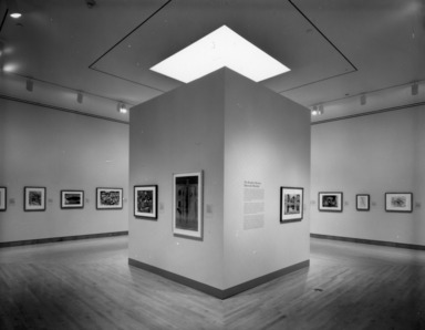 Masters of Color and Light: Homer, Sargent and the American Watercolor Movement, May 07, 1998 through August 23, 1998 (Image: PSC_E1998i018.jpg Brooklyn Museum photograph, 1998)