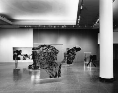 Leon Golub: World Wide, April 12, 1991 through June 16, 1991 (Image: PUB_E1991i001.jpg  photograph, 1991)