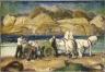 The Sand Cart