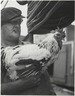 Man with Rooster, New York