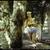Dara Birnbaum (American, born 1946). <em>Technology/Transformation: Wonder Woman 1978/9</em>. NTSC Digi-Beta Master, color, stereo sound, 5 minutes 30 seconds Brooklyn Museum, Gift of Elizabeth A. Sackler, 2013.23. © artist or artist's estate (Photo: Brooklyn Museum, 2013.23_view1_PS4.jpg)