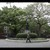 Steffani Jemison (American, born 1981). <em>Personal</em>, 2014. Digital video projection, color, sound, TRT, 6 minutes 45 seconds    Brooklyn Museum, Alfred T. White Fund, 2015.8. © artist or artist's estate (Photo: Brooklyn Museum, 2015.8_view05_SC.jpg)