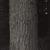 Stephen Shore (American, born 1947). <em>Annandale-on-Hudson, New York</em>, 1995. Gelatin silver photograph, 10 × 8 in. (25.4 × 20.3 cm). Brooklyn Museum, Gift of The Carol and Arthur Goldberg Collection, 2016.18.12. © artist or artist's estate (Photo: , 2016.18.12_PS9.jpg)