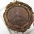 Fijian. <em>Drum</em>. Coconut shell, skin, fiber, 3 3/4 x 3 15/16 in. (9.5 x 10 cm). Brooklyn Museum, Brooklyn Museum Collection, 02.98. Creative Commons-BY (Photo: , CUR.02.98_base.jpg)