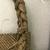 ni-Vanuatu. <em>Basket</em>, late 19th century. Fiber, 10 x 17 11/16 in. (25.4 x 45 cm). Brooklyn Museum, By exchange, 07.468.9418. Creative Commons-BY (Photo: , CUR.07.468.9418_detail04.jpg)