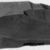 <em>Double Round Ended Scraper</em>, ca. 3300-2675 B.C.E. Flint, 1 7/16 x 2 11/16 in. (3.7 x 6.8 cm). Brooklyn Museum, Charles Edwin Wilbour Fund, 09.889.142. Creative Commons-BY (Photo: , CUR.09.889.142_NegID_07.447.925GRPA_print_cropped_bw.jpg)