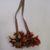 Aguaruna-Shuar. <em>Hair Ornament</em>, 20th century. Toucan feathers, cotton, 6 1/4 × 29 in. (15.9 × 73.7 cm). Brooklyn Museum, Gift of Nobuko Kajitani, 1997.57.4. Creative Commons-BY (Photo: , CUR.1997.57.4.jpg)