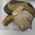<em>Shadow Play Figure (Wayang golek)</em>. Wood, pigment, fabric, 5 7/8 × 20 7/8 in. (15 × 53 cm). Brooklyn Museum, Gift of Appleton Sturgis, 35.2112. Creative Commons-BY (Photo: , CUR.35.2112_head.jpg)