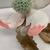 Sugiura Yasuyoshi (Japanese, born 1949). <em>Dogwood Flower</em>, 2019. Glazed stoneware with metallic glazes, 17 3/8 × 17 3/8 × 15 in. (44.1 × 44.1 × 38.1 cm). Brooklyn Museum, Gift of Joan B. Mirviss in honor of Alan Beller, 2020.14. © artist or artist's estate (Photo: Brooklyn Museum, CUR.TL2020.13_detail02.jpg)