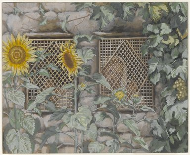 James Tissot (French, 1836-1902). <em>Jesus Looking through a Lattice (Jésus regardant à travers le treillis)</em>, 1886-1894. Opaque watercolor over graphite on gray wove paper, Image: 5 11/16 x 6 15/16 in. (14.4 x 17.6 cm). Brooklyn Museum, Purchased by public subscription, 00.159.11 (Photo: Brooklyn Museum, 00.159.11_PS1.jpg)