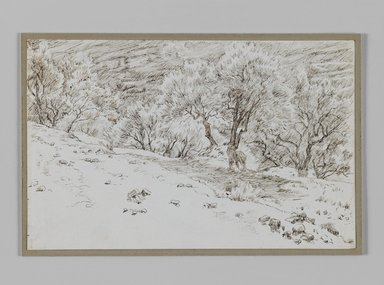 James Tissot (French, 1836-1902). <em>Olive Trees, Valley of Hinnom (Oliviers, vallée de Hinon)</em>, 1886-1887 or 1889. Pen and ink on paper mounted on board, Sheet: 4 11/16 x 7 5/16 in. (11.9 x 18.6 cm). Brooklyn Museum, Purchased by public subscription, 00.159.385 (Photo: Brooklyn Museum, 00.159.385_IMLS_PS3.jpg)