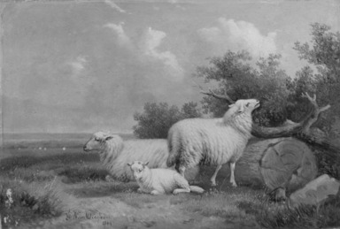 Jacob van Dieghem (Belgian, 19th century). <em>Sheep</em>, 1869. Oil on panel, 6 9/16 x 9 1/2 in. (16.7 x 24.1 cm). Brooklyn Museum, Bequest of Caroline H. Polhemus, 06.278 (Photo: Brooklyn Museum, 06.278_acetate_bw.jpg)