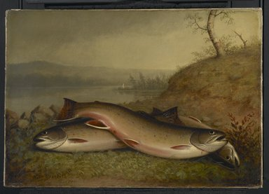 Walter M. Brackett (American, 1823-1919). <em>Trout</em>, 1867. Oil on canvas, 14 x 20 1/16 in. (35.5 x 51 cm). Brooklyn Museum, Bequest of Caroline H. Polhemus, 06.321 (Photo: Brooklyn Museum, 06.321_PS2.jpg)