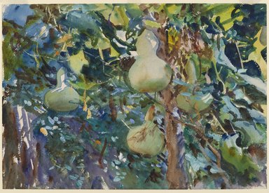 John Singer Sargent (American, born Italy, 1856-1925). <em>Gourds</em>, 1908. Opaque and translucent watercolor with graphite underdrawing, 13 13/16 x 19 11/16in. (35.1 x 50cm). Brooklyn Museum, Purchased by Special Subscription, 09.822 (Photo: Brooklyn Museum, 09.822_PS6.jpg)