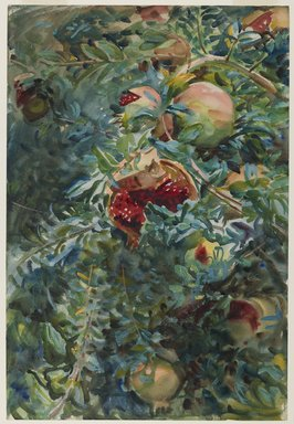 John Singer Sargent (American, born Italy, 1856-1925). <em>Pomegranates</em>, 1908. Opaque and translucent watercolor with graphite underdrawing, 21 3/16 x 14 7/16in. (53.8 x 36.7cm). Brooklyn Museum, Purchased by Special Subscription, 09.832 (Photo: Brooklyn Museum, 09.832_PS6.jpg)