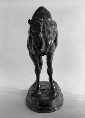 Antoine-Louis Barye (French, 1795-1875). <em>Small Algerian Dromedary</em>. Bronze, 5 3/4 x 7 1/2 in. (14.6 x 19.1 cm). Brooklyn Museum, Purchased by Special Subscription, 10.147. Creative Commons-BY (Photo: Brooklyn Museum, 10.147_front_bw.jpg)
